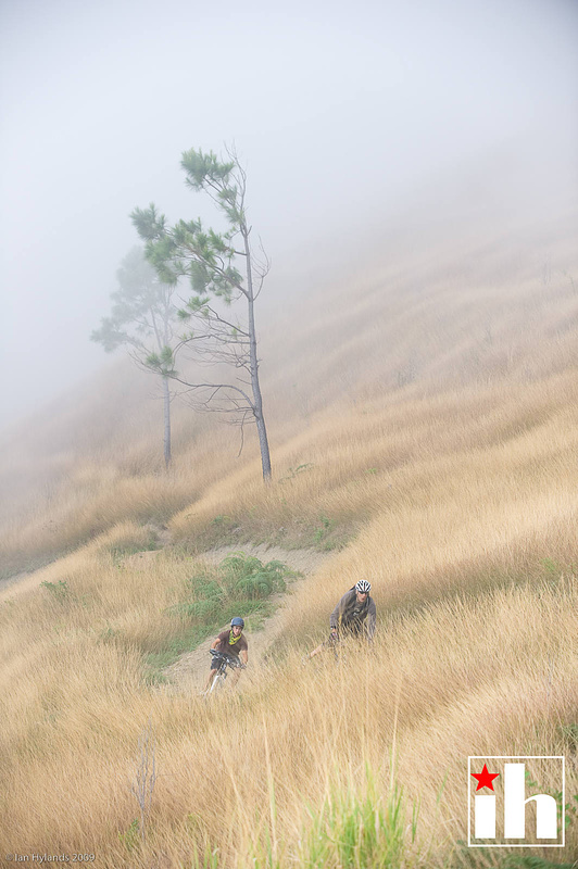 riding down in the fog