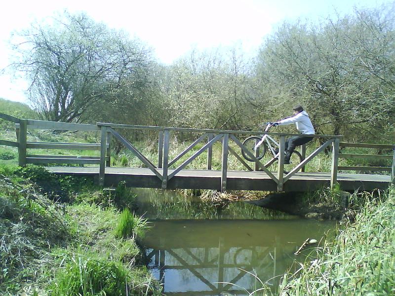 manny the bridge