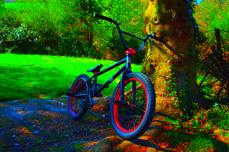 My bike-Wethepeople trust 2010