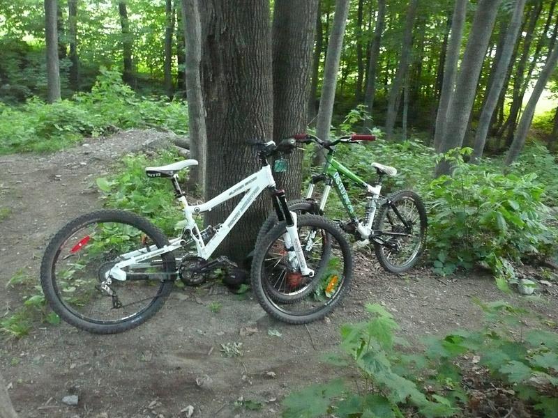 our sexy bikes