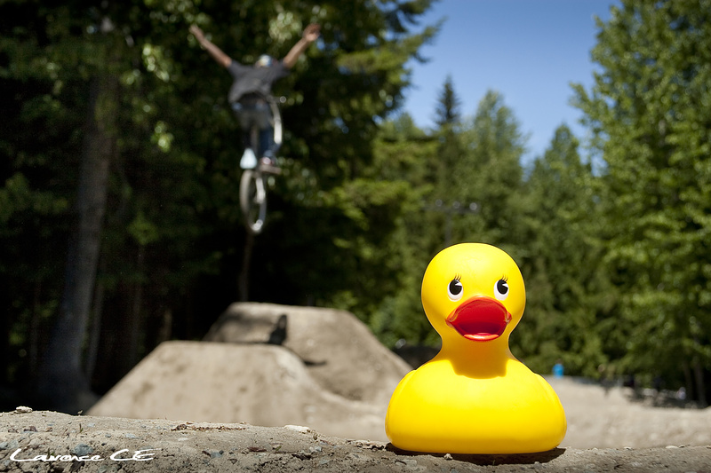 The Happy Duck watches you tuck no hander - Laurence CE - www.laurence-ce.com