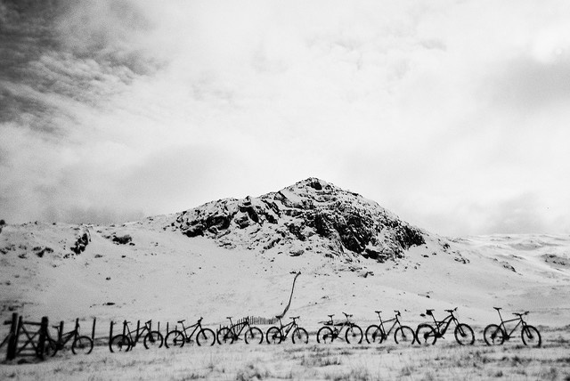 All the bikes at the top.