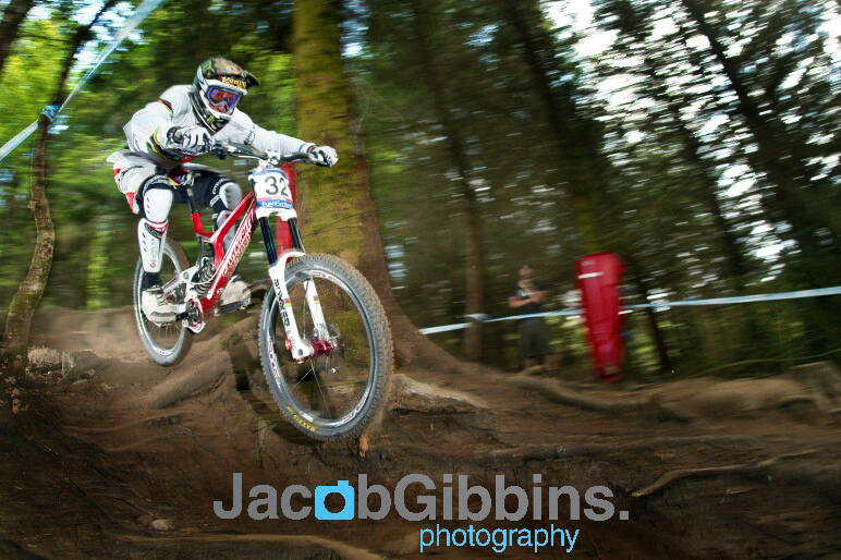 Shot of Peaty in the woods