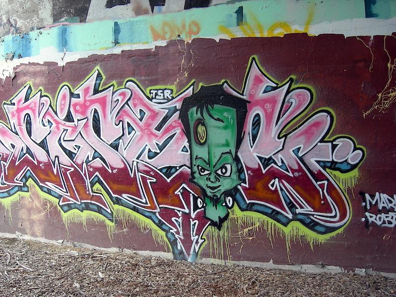 some graffiti in detroit...real graffiti.