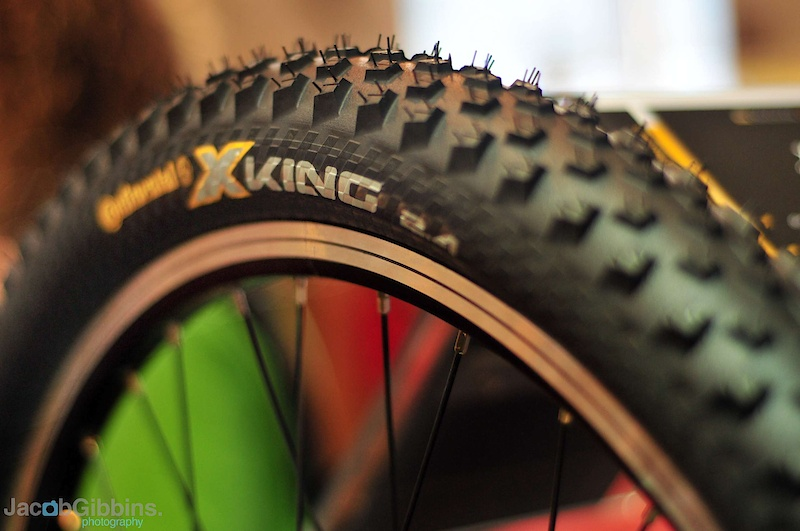 X-King.  Pretty much as light as a hard and aggressive rider will want to go with a trail tyre in terms of tread (or lack of it).  These are, like the Mountain King, a 2.4