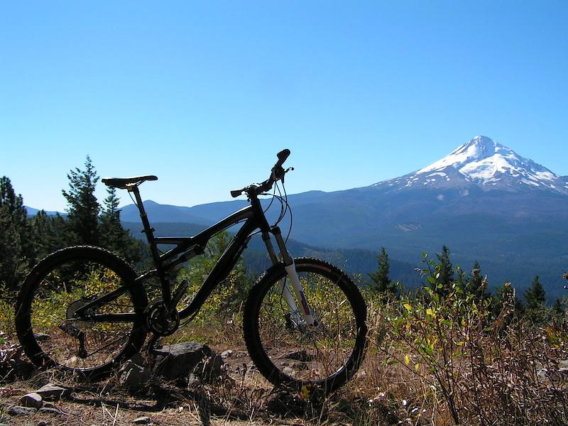 Stumpy & Mt.Hood