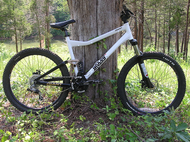 Post Your Giant Brass Page 3 Pinkbike Forum