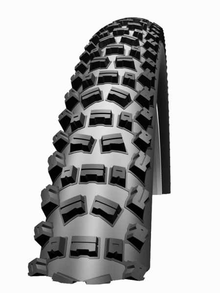 Schwalbe 2011 Fat Albert Rear