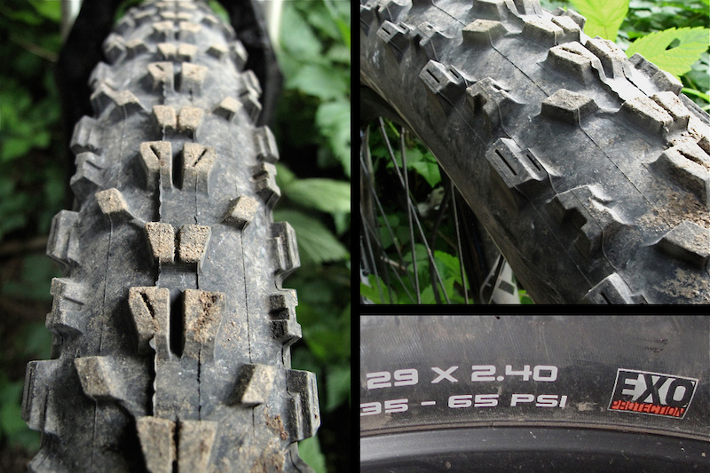 Maxxis Ardent 29x2.4 EXO tire