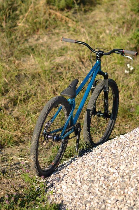 Dartmoor quinnie 2011