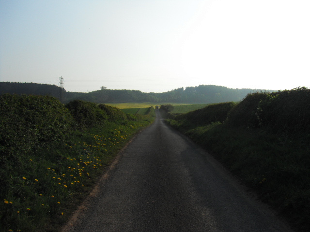 road into hanchurch. woods in background