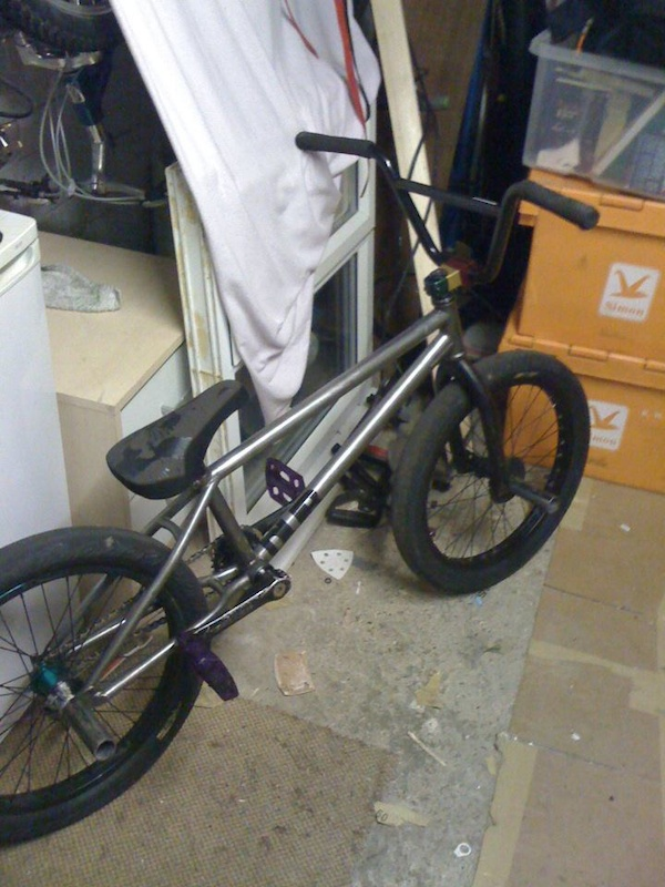 rawed frame and new cult stem