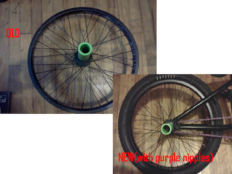 its kinda hard to see but this is my rear wheel before and after i put the new purple nipples on it. its looks so sick il have a better pic soon
