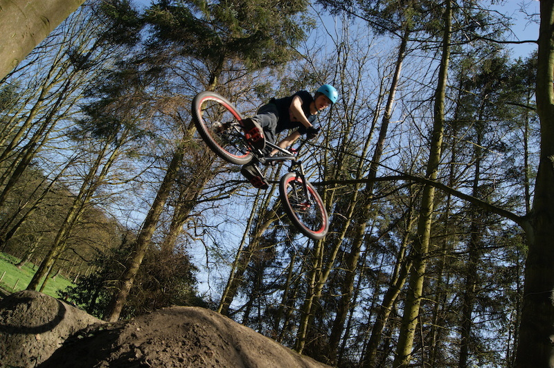 whip, photo taken by tom