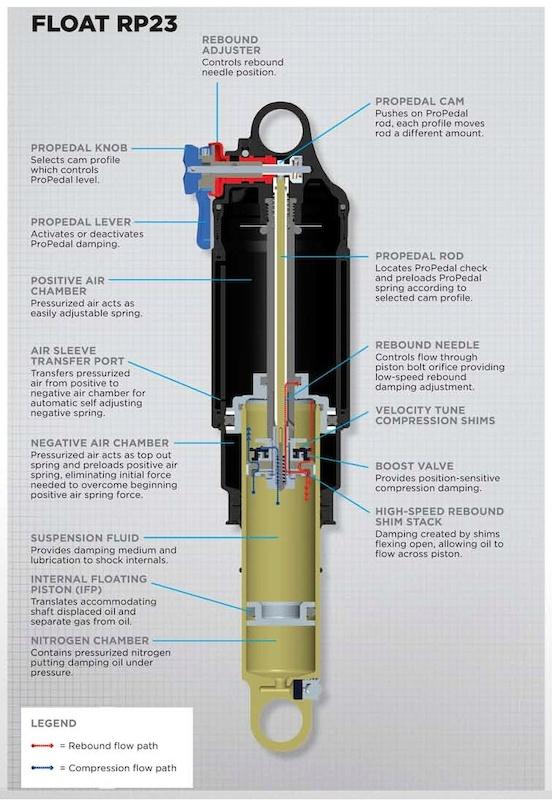 Fox Graphic Float RP23 cutaway
