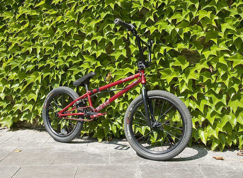 Our new BMX shredder straight from Czech Republic, with his Yuki build