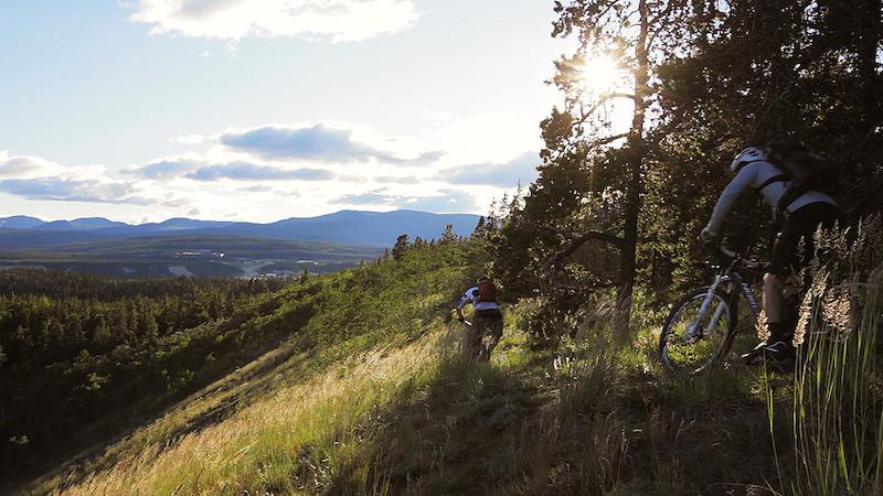 Amazing singletrack riding in Whitehorse Yukon