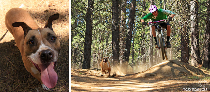 Colt and his dog shredding whoops trail in Bend OR.