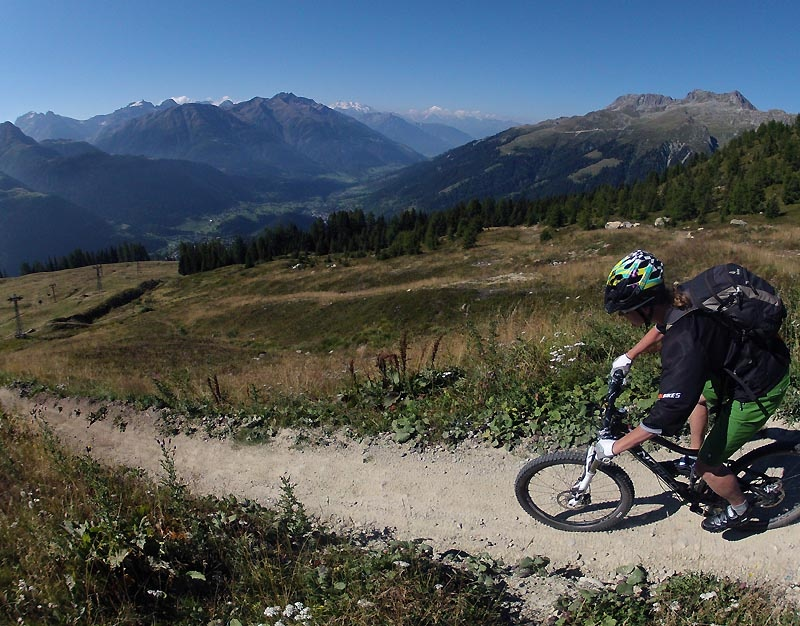 There are two downhill mountain bike trails off Bellwald. A freeride one and a more flowy one. They were in pretty good shape