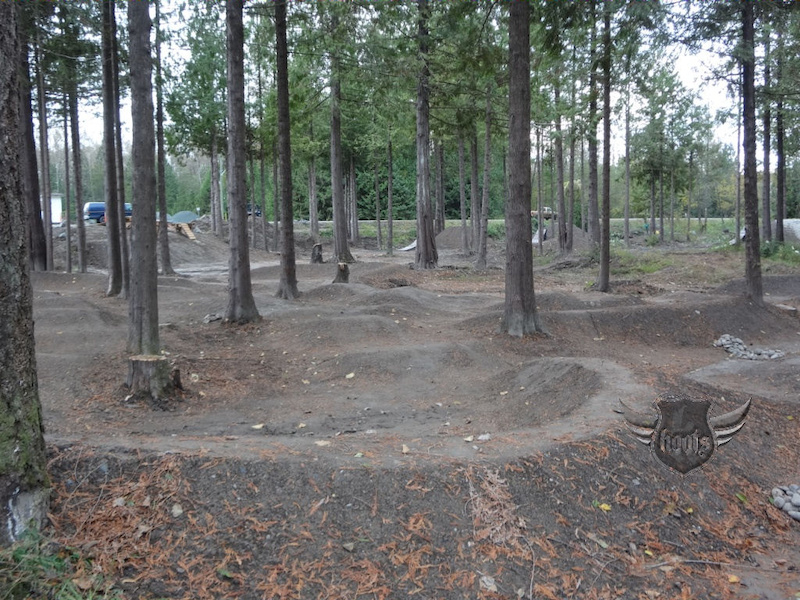 Lots of lines in this pumptrack
