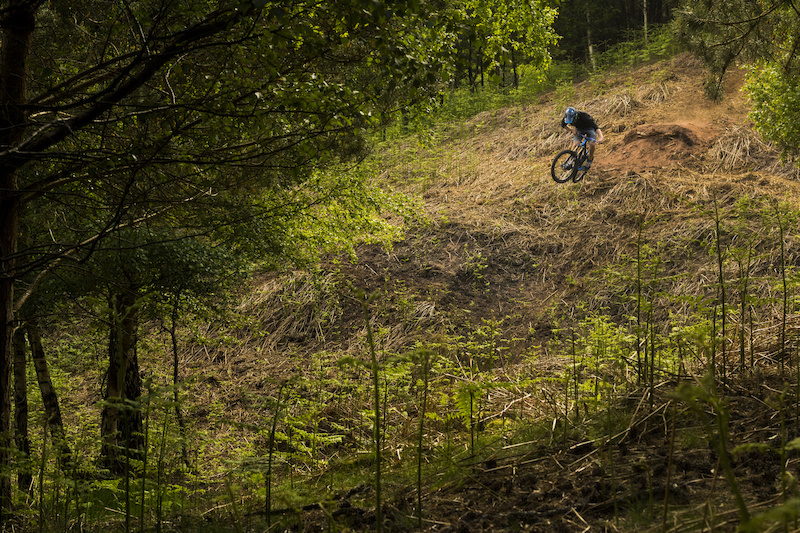 Sending the stepdown at cannock chase