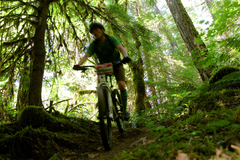 Lush overgrown riding in the Willamette National Forest.