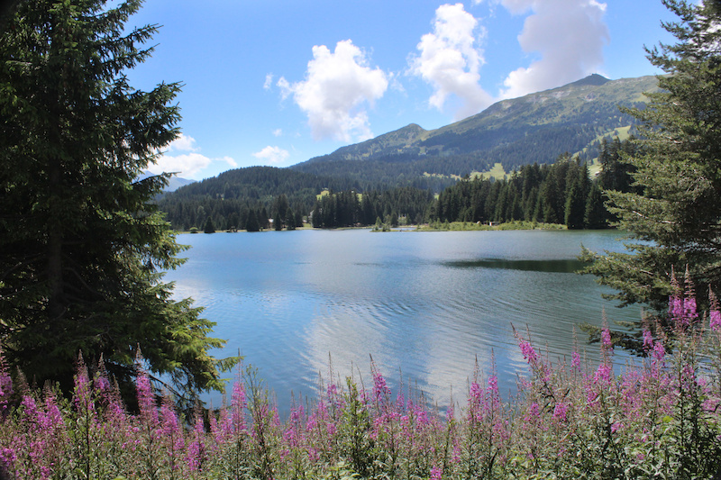 Pristine alpine lake in Lenzerheide.