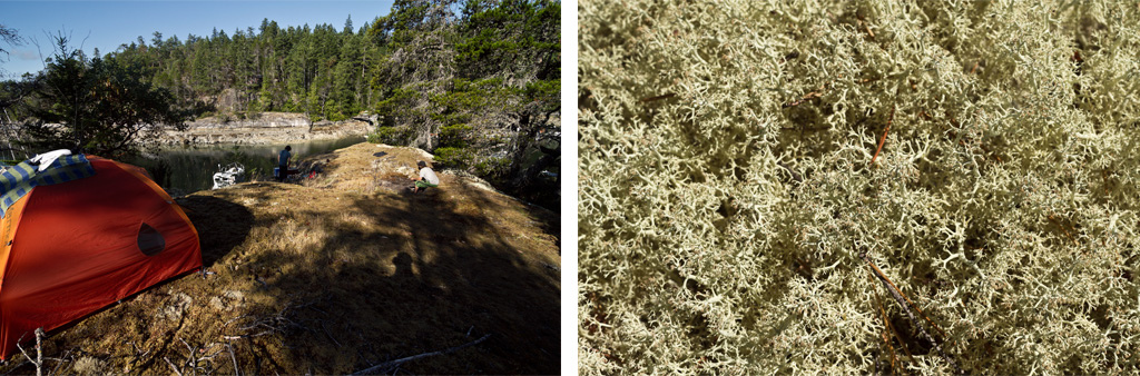 Bone dry lichens made for exceptionally soft camping pads and no chance of open fire cooking.