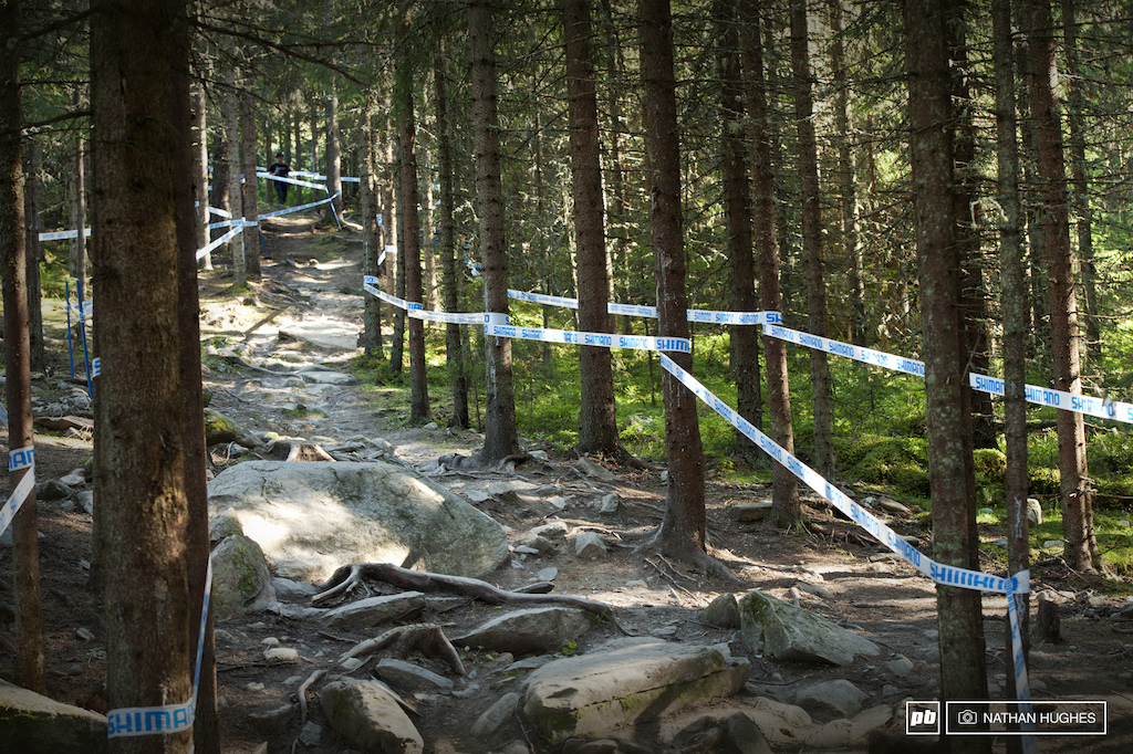 The largely smooth open sections are interrupted by plenty of gnar in the dark of the trees.