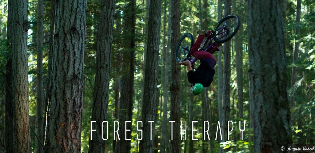 photo credits : Augie Horeth --- http://www.pinkbike.com/u/colin-grant/blog/Forest-Therapy--Isayah-Chelini-Dheensaw.html