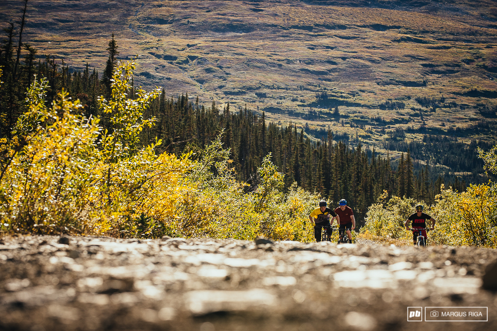 Carcross resident Wayne Roberts came across an abandoned trail underneath the historic Mountain Hero mining tramway in the late 1990s. He cleared out the trail into the subalpine ran hiking tours on it and welcomed writer Mitch Scott and photographer John Gibson on assignment with BIKE and some mountain biking locals on the first mountain biking descent in September 2000. Wayne is originally from BC. Trails actually drew him to Carcross as he saw an opportunity with the cruise ship tourists from Skagway and scenic historic trails in Carcross. In this photo we are laboring up the road about 70 of the way up Montana Mountain.