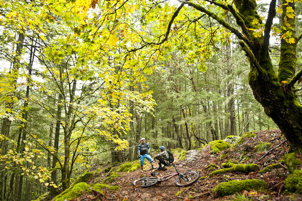 So the boys arrived at my house at the scheduled time and the plan was to head down to ride in Victoria. However it was a super beautiful day warm and overcast. Since the new trail I d been working on was literally right above my house I suggested we just get up there and start riding and skip the travel time to Victoria. Dre and I agreed that it would ve been great to showcase some of the trails in Victoria that he d spent so much time riding but at the same time he rode in the Cowichan Valley too so we might as well get to it. The true soul and highlight of mountain biking on Vancouver Island is the fact that you can pretty much ride every day of the year. It s not uncommon to have temperatures in the double digits in January for god s sake. That s what makes Victoria such an ideal training ground for Canada s top cyclists. I was stoked to show the guys the new trail on Maple Mountain which was a fresh effort put together by a Society I helped start called the Cowichan Trail Stewards. Dre has watched all these riding towns on the coast transform into full on destinations with races events clubs tons of new trails and riders. I was excited to show him what we had started on Maple Mountain.