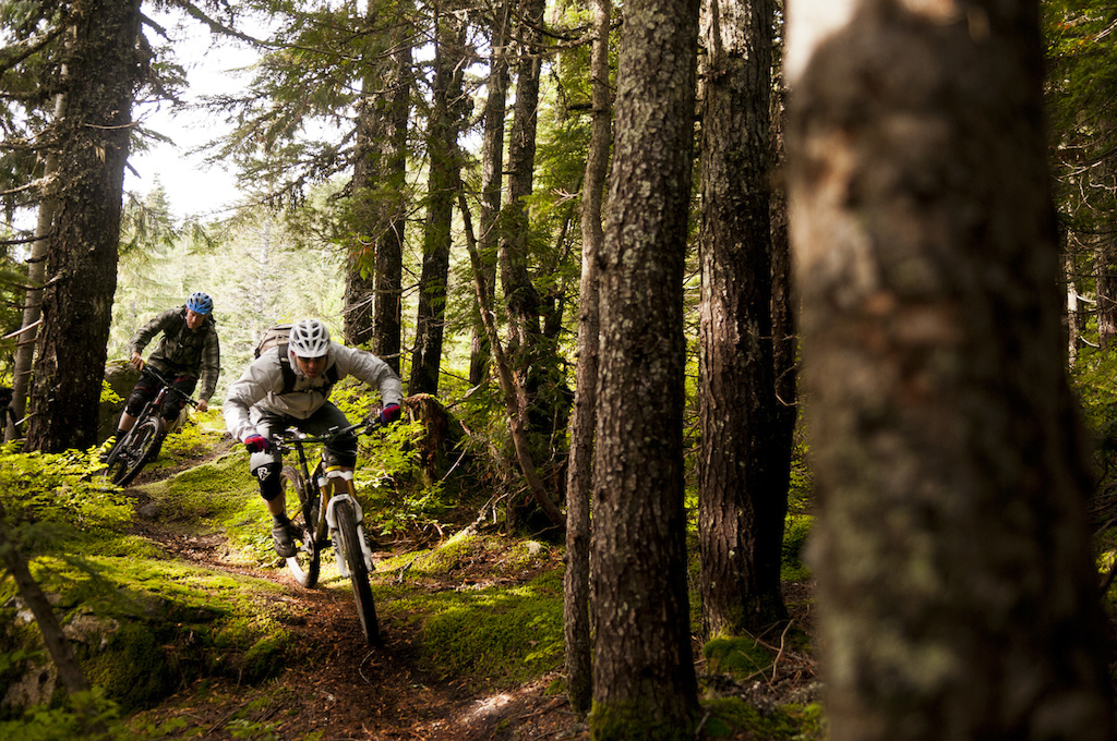 Here we are asserting our double bladed loam saws deep into the soft forgiving earth. Dre is a hard charging master rider really forcing and directing his bike ahead of me with authority. This upper section of the trail is neat because there is a deep canyon on the rider s right as you speed downwards. It offers a sense of vertical relief and also sporadic views of the ocean. The ecosystem is more sub-alpine style with lots of hemlock and scrubby yellow cedar. Up here the feeling is much different than the trails of Maple Mountain from the day before and that diversity adds to the fun.