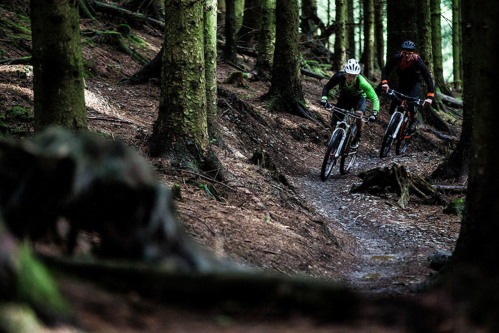 The woodland singletrack was also fast on the climbs.