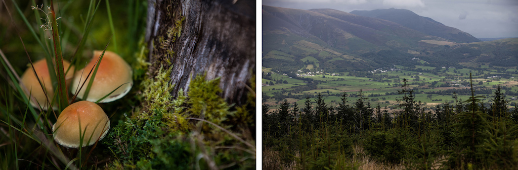 Whether you looked up close or out in the distance The Lakes provide and constant source of amazement.