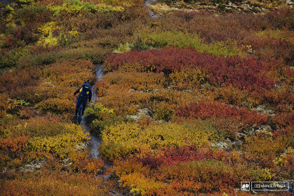 Fall colours Yukon Canada. Rider James Doerfling.