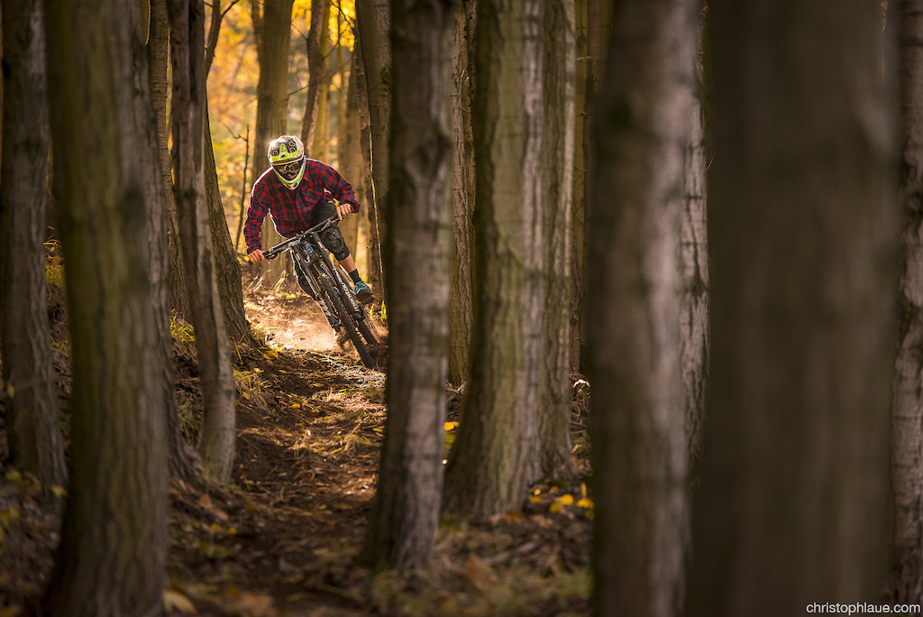 shot in the uphill section of my backyard trail, By Mr. Laue