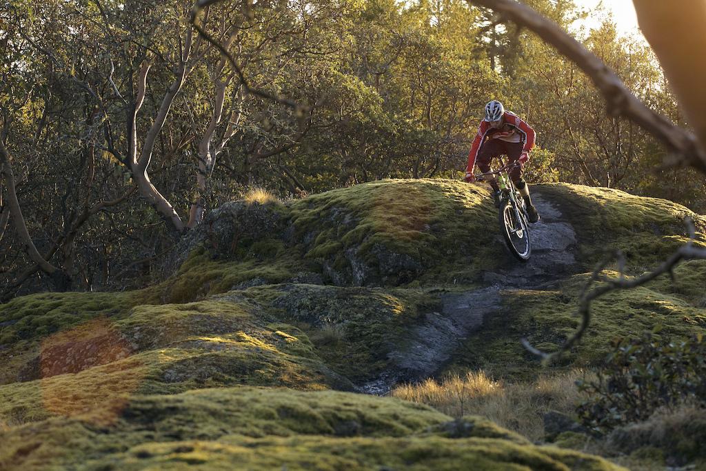 January Riding