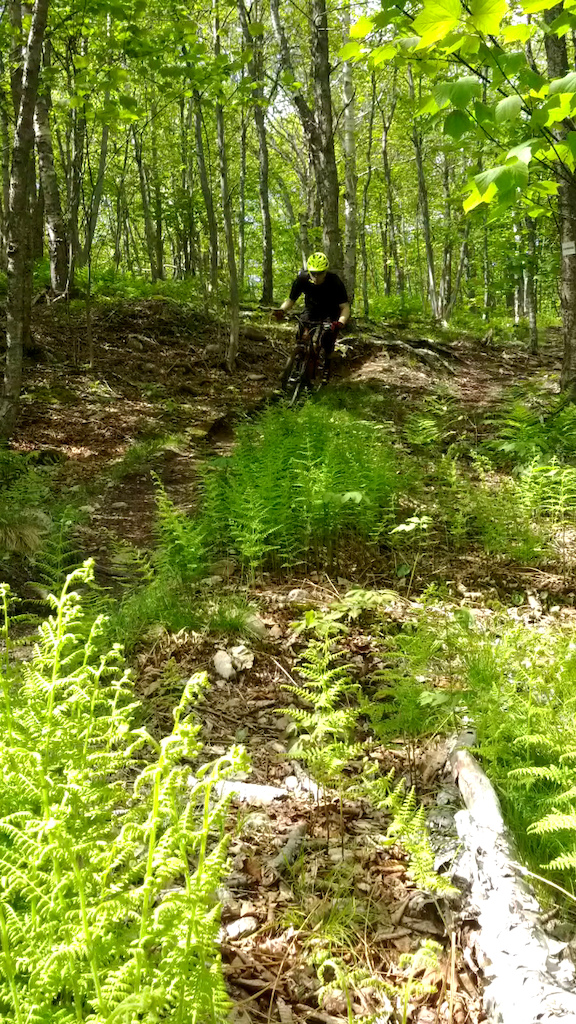 Final descent in Carnage (Rockwood Park, Saint John, NB.) Black diamond rating