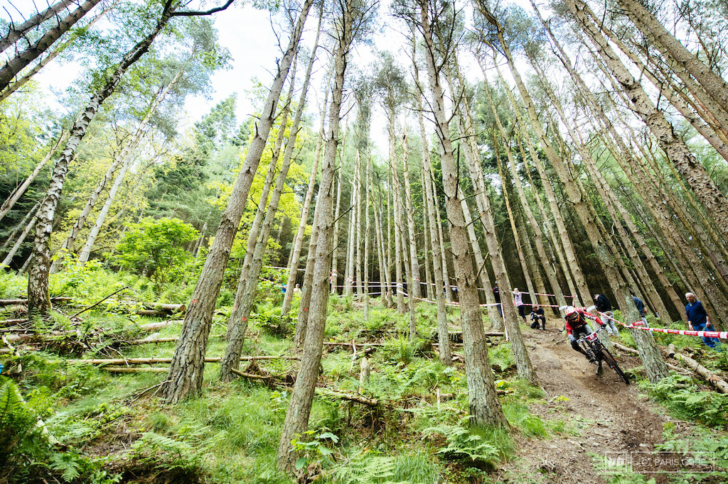 Bottom of the 4th stage was easy access for fans and beautiful Scottish forests.