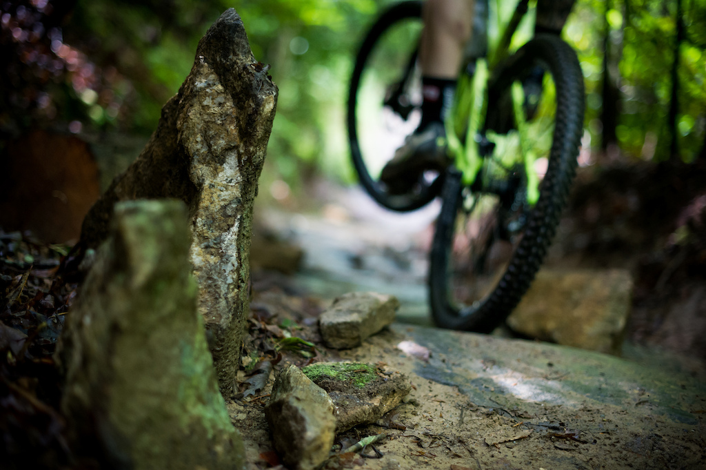 Trek Fuel EX 27.5 FOX RE:active shock testing   Photos by Dan Milner and Sterling Lorence