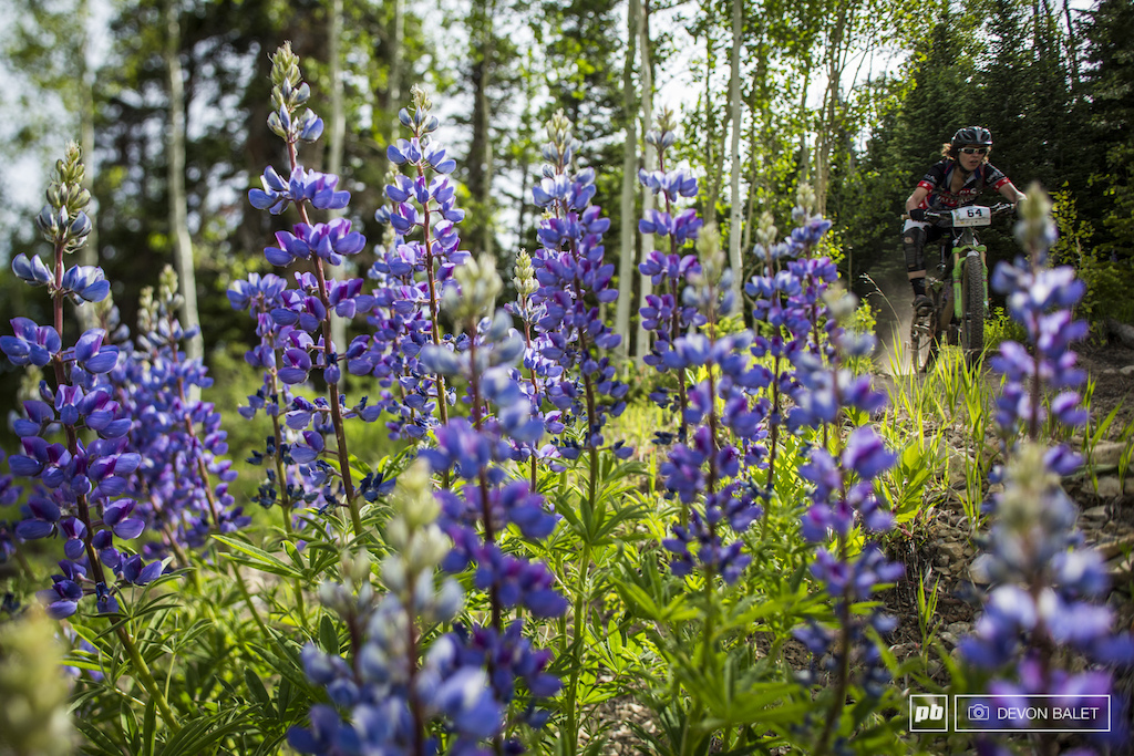 The flowers on Snowmass were well on their way to full bloom this past weekend Cait Dmitriev on stage 5. Cait took 4th place a full four minutes behind pro women s leader Brittany Clawson.