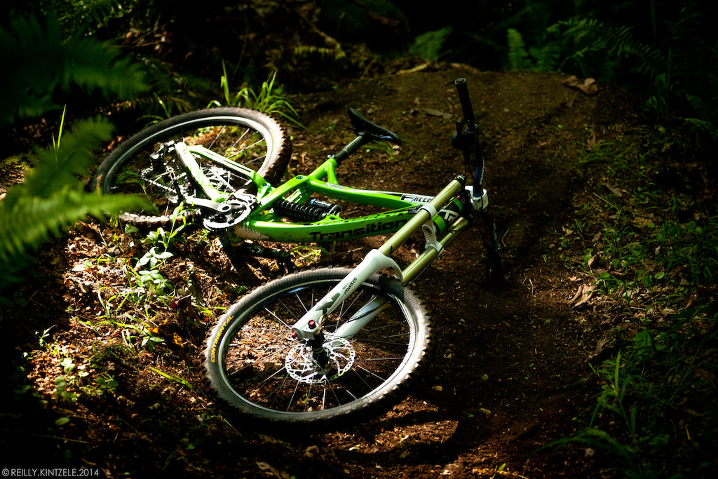 Matt s TR500 in all its glory.