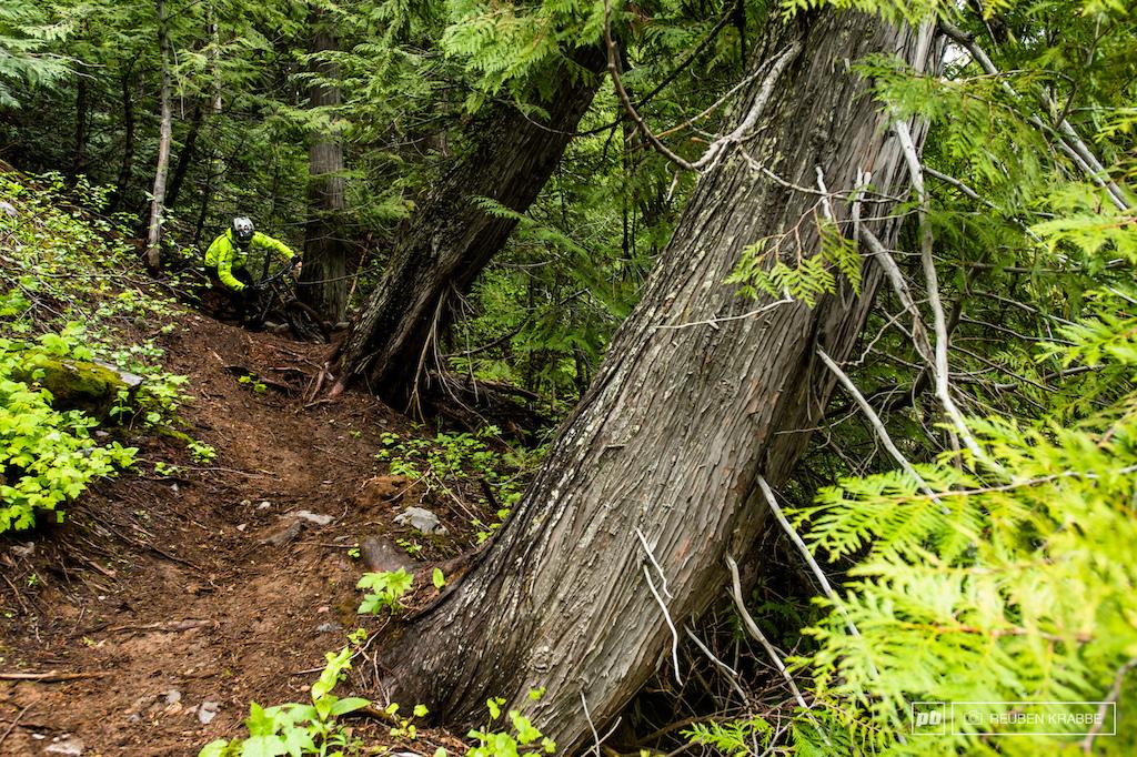 Fernie BC. Big Bikes and Big Descents - Images by Reuben Krabbe
