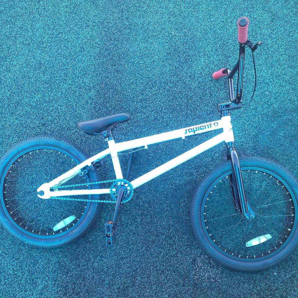 2012 20 in Sapient BMX Bike