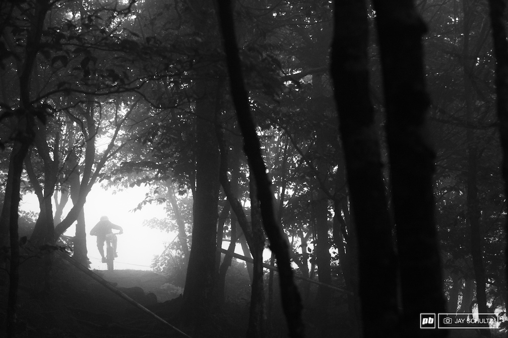 Was I Right - Here we go entry into the woods .. Dark as night What do you think