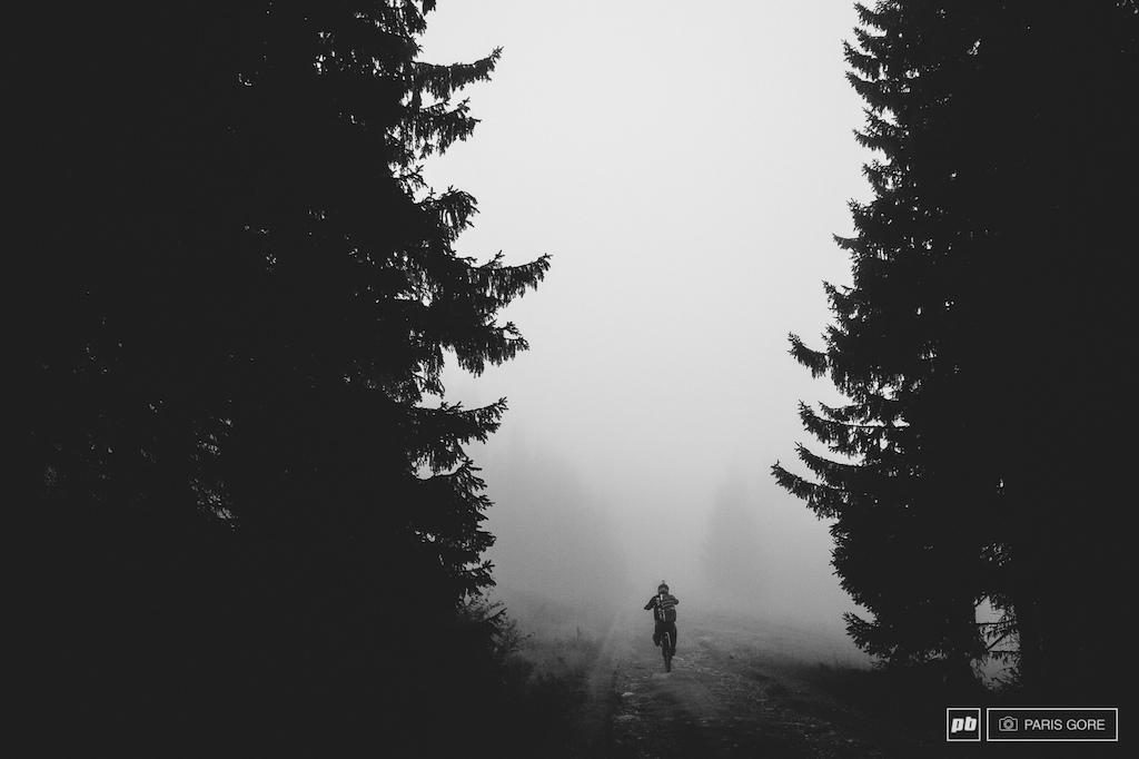 Into the misty Norwegian wood.