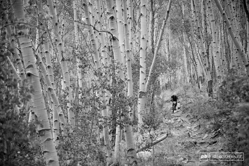 Mountain Flyer Magazine founder Brian Riepe keeps it smooth through the rough of Doctors Park. Riepe finished top on the day in the Masters Men race.