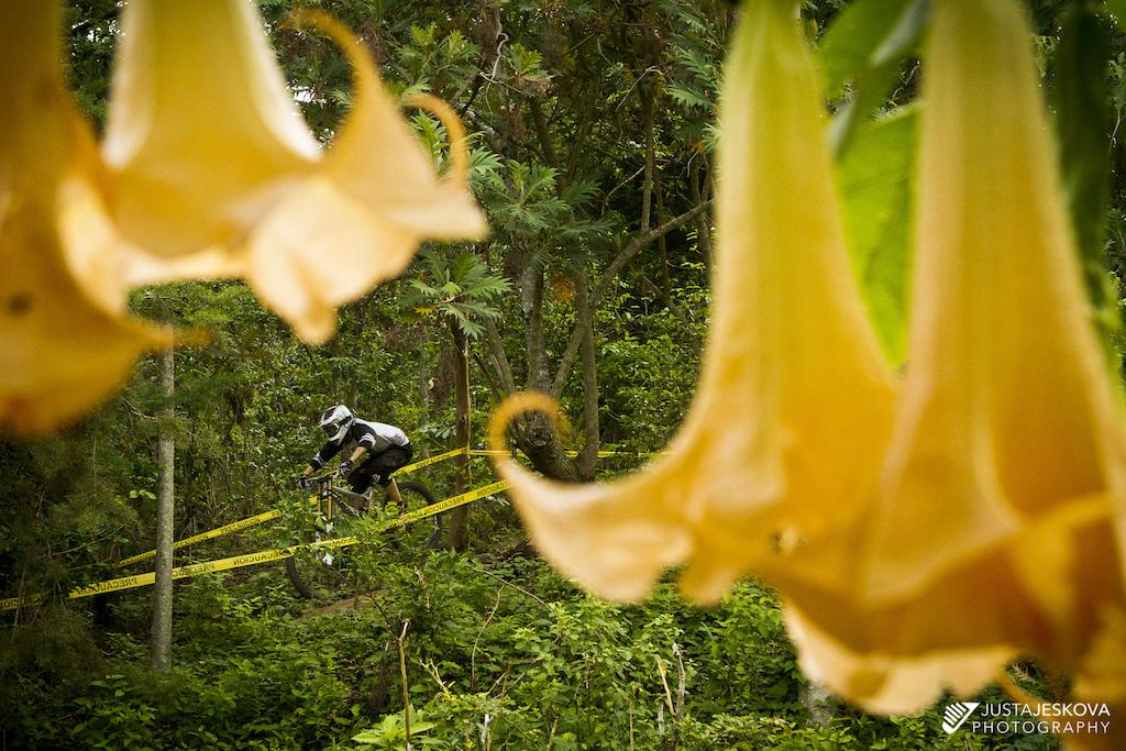 DH race in El Salvador.