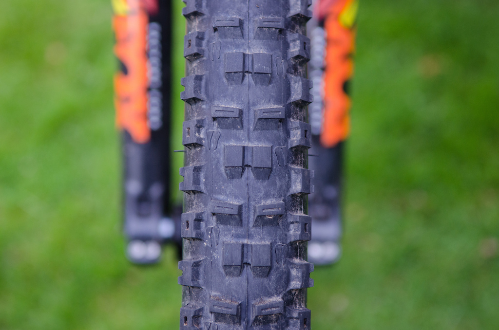 Onza Ibex tire review